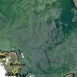Հայաստանի «մարգարիտը» ճահճացման սպառնալիքի առջև. BBC-ն անդրադարձել է Սևանա լճի վիճակին