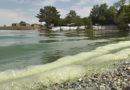 Սևանա լճում թունավոր ջրիմուռների բուռն աճի հետևանքով առաջացած իրավիճակը խոշոր մարտահրավեր է մեր ազգային անվտանգության նկատմամբ