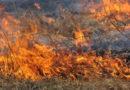 «Խոսրովի անտառ» պետական արգելոց տանող ճանապարհին՝ «Մեղրաքար» կոչվող հատվածում այրվում է 17 հա բուսածածկույթ